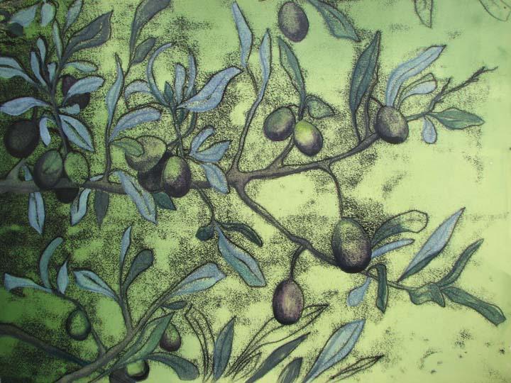 olive trace IMG_5966 copy.jpg
