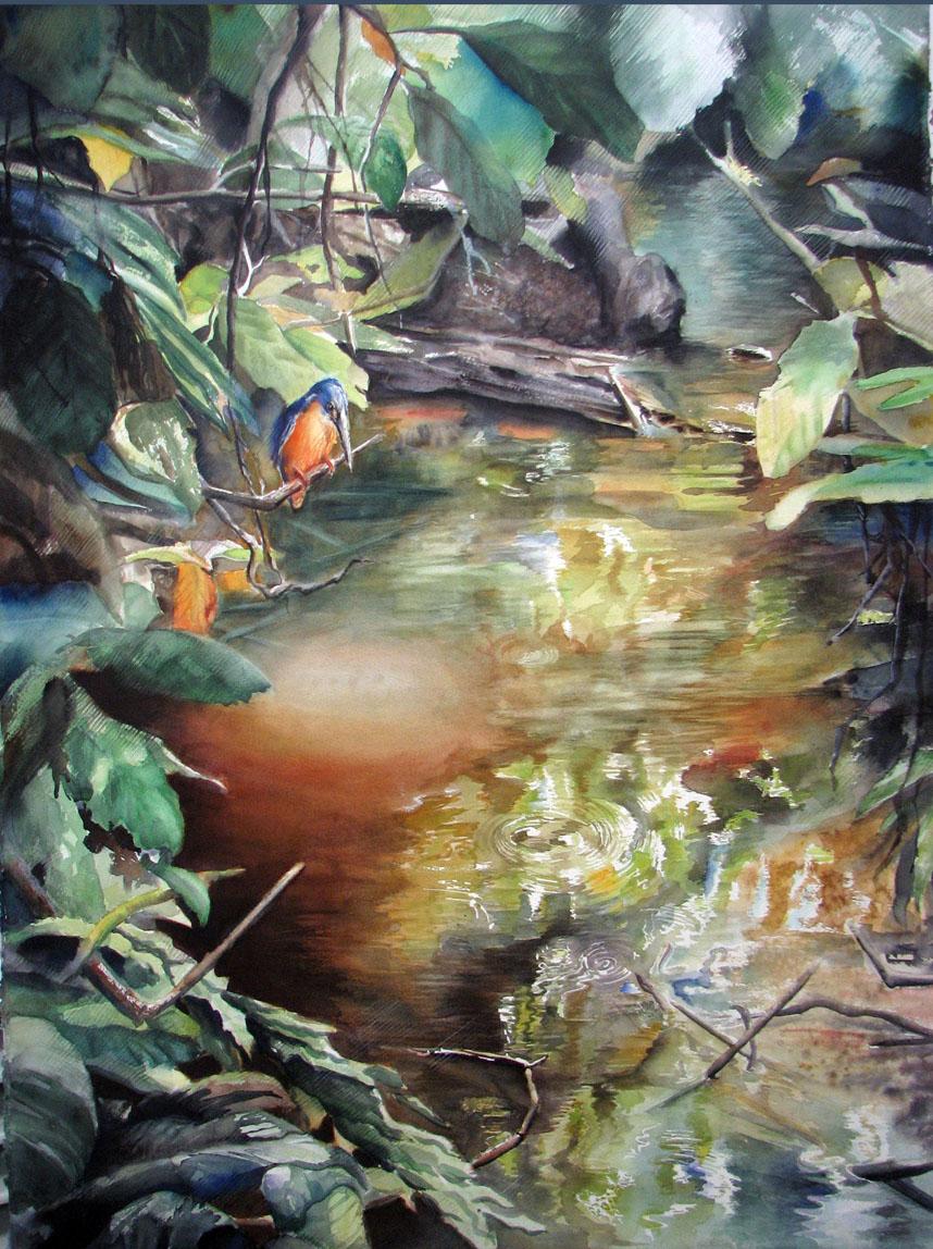 kingfisher final IMG_7264.jpg