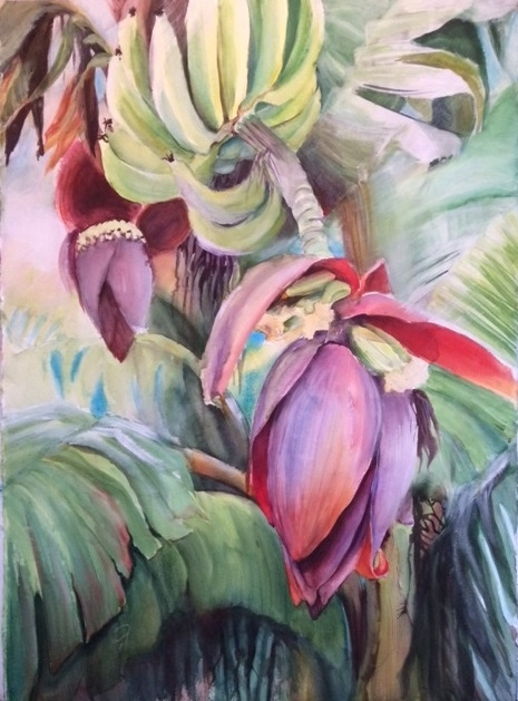 Banana Blossom.jpg