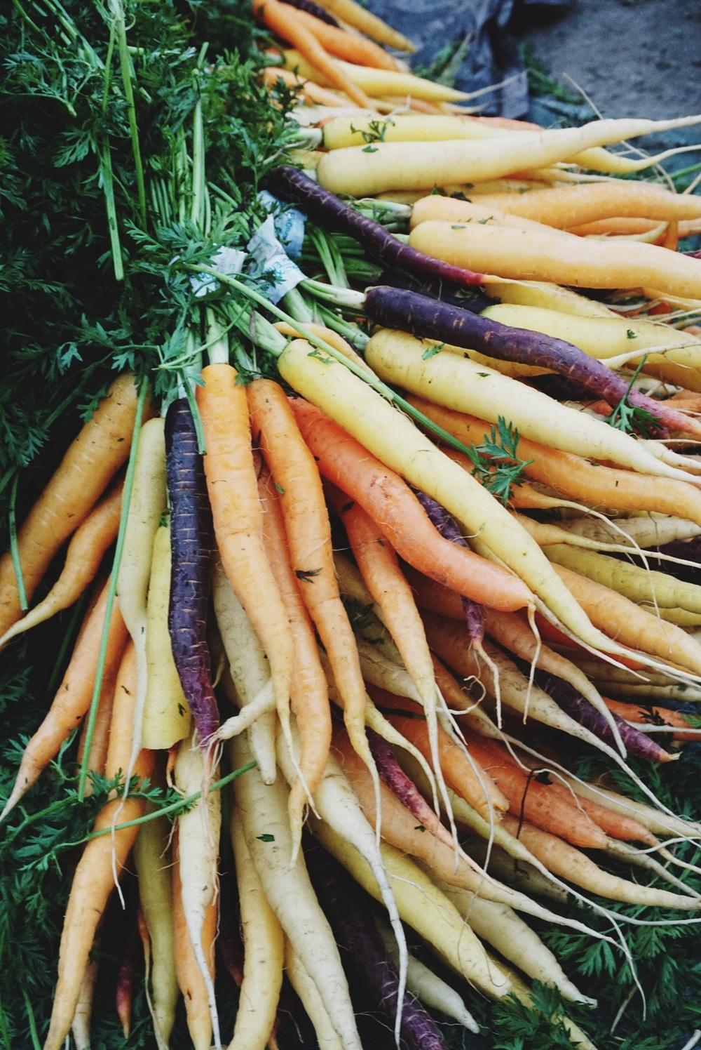 Morötter bondens marknad.jpg