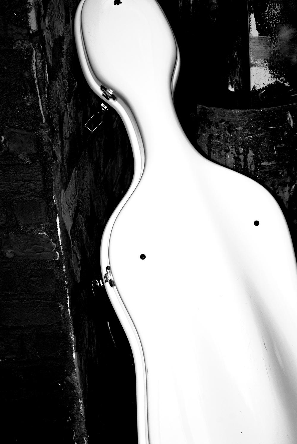 cellocase.jpg