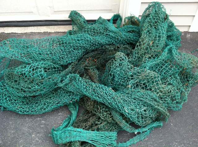 Fishing Net_green.JPG
