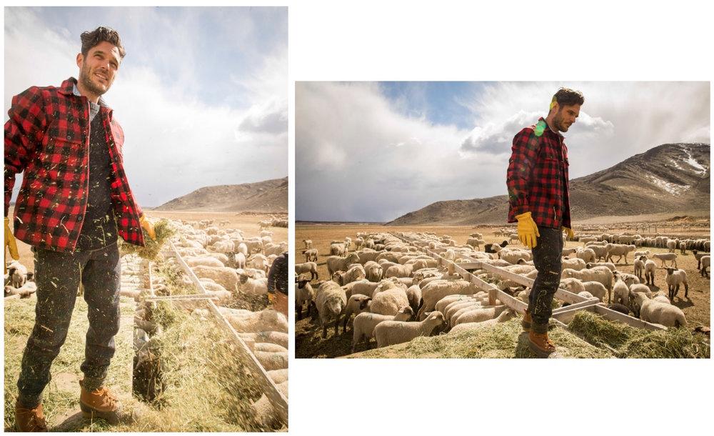 Wool Fall - 10.jpg