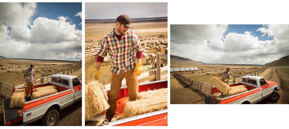 Wool Fall - 12.jpg