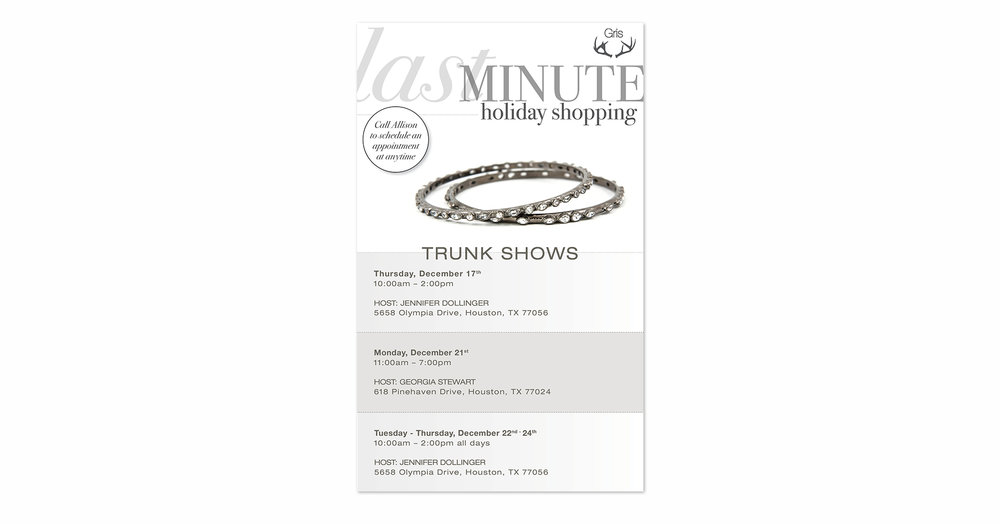 Last Minute Holiday Shopping 2015 Email Campaign