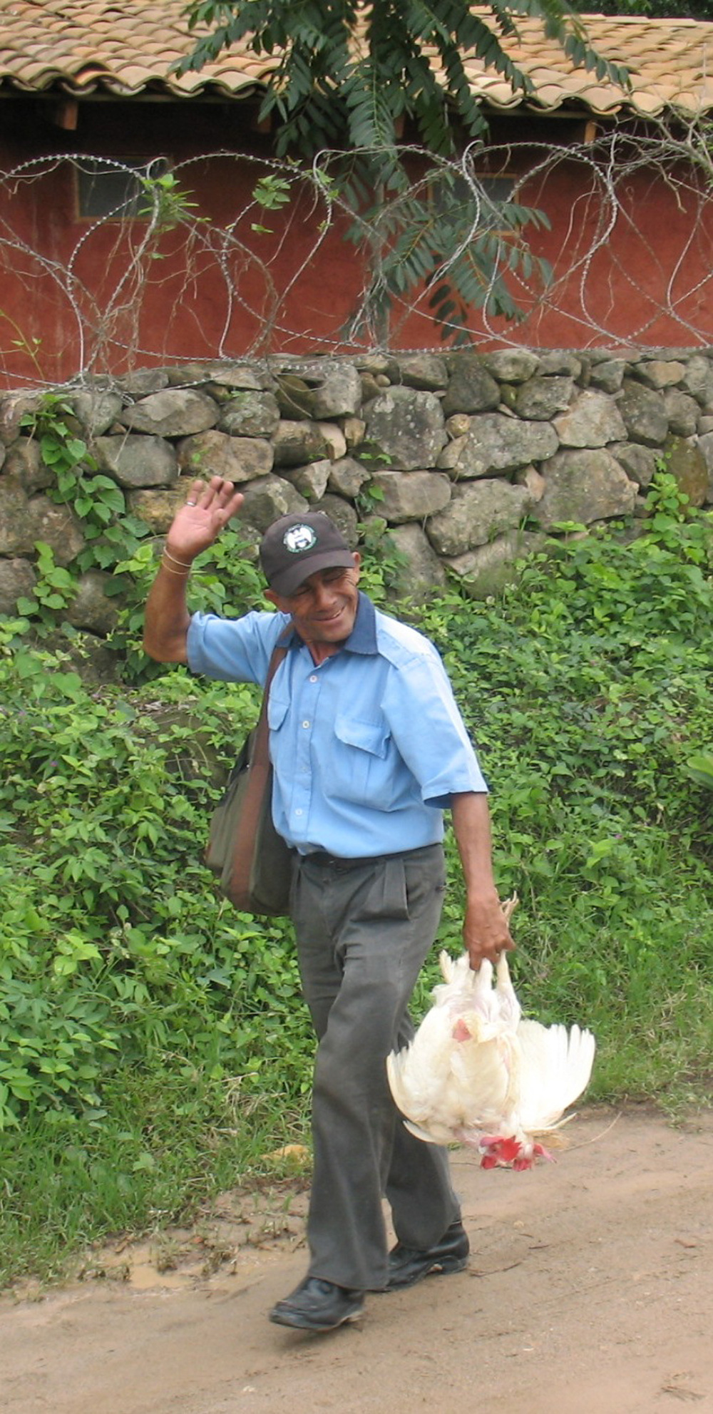web.man with chickens.jpg