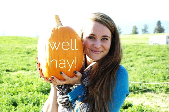 pumpkinpatch1.jpg