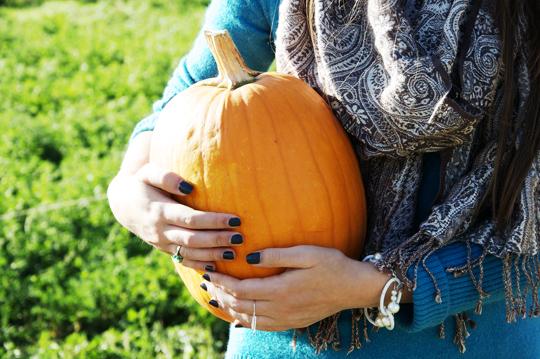 pumpkinpatch3.jpg