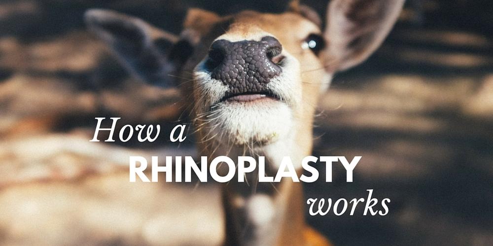 how a rhinoplasty works