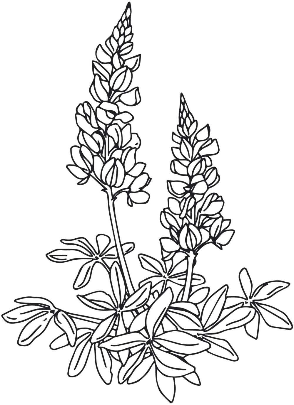 GG_Floral Icon_Grey.png