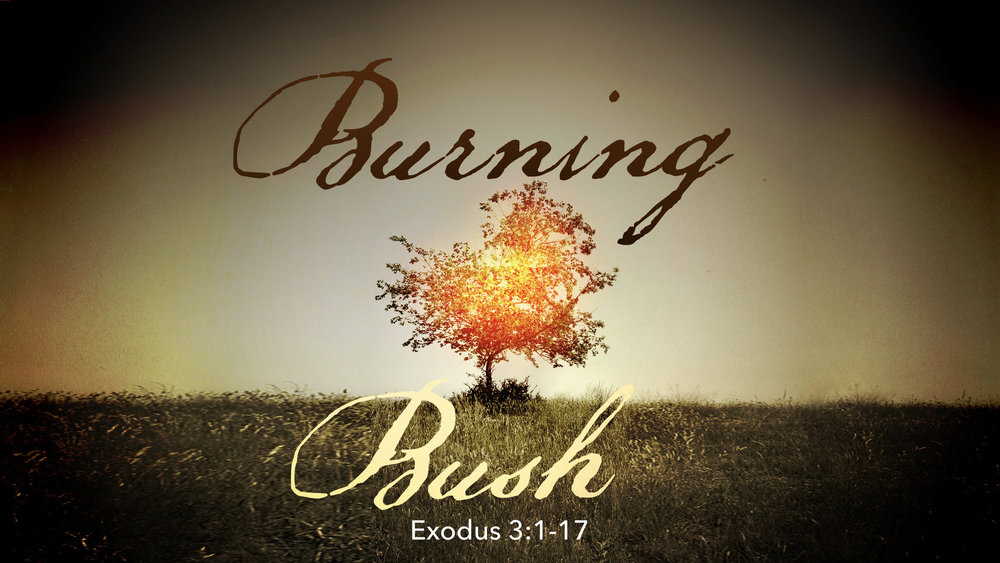 Exodus Sermons.001.jpeg