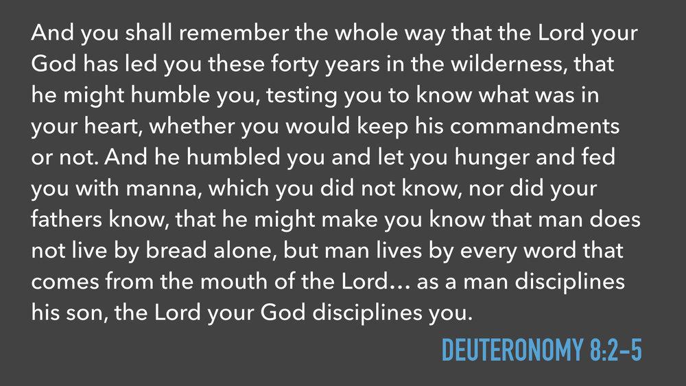 Exodus Sermons.004.jpeg