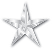 SilverStarforweb.jpg