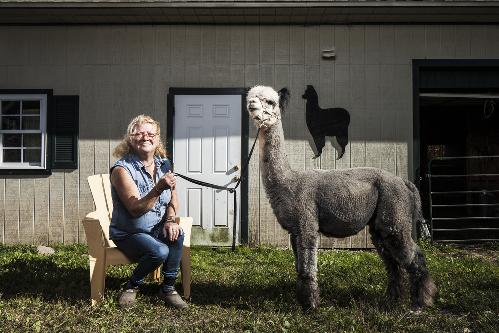 Imagine_Alpacas_eddie_adams_workshop_2015 (10 of 11).jpg