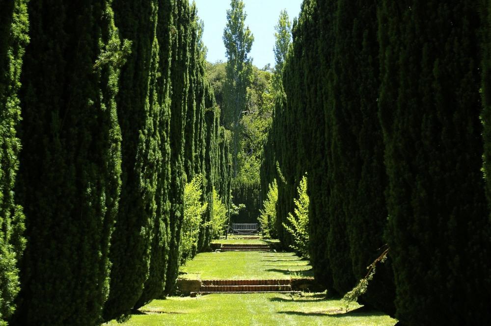 Fioli Gardens 43.jpg