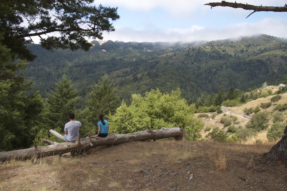 looking west from edgewood3.jpg