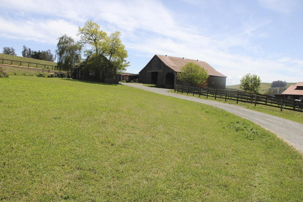 Petaluma Ranch TR 20.jpg