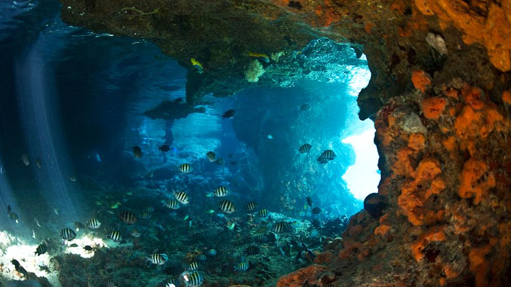 cave 5.jpg