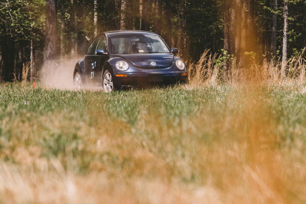 beetle21_009.jpg