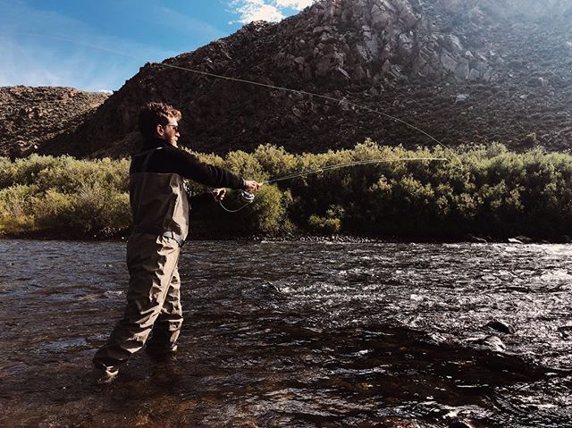 Some roadside troutin' #colorado #flyfishing #fishing #troutfishing #coloradofishing #livsn #livsndesigns