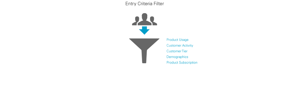To target the right messages customers enter through an Entry Criteria Filter