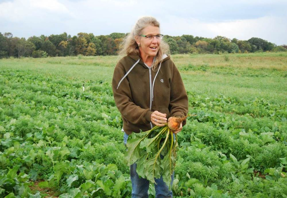 Ellen Polishuk, of Potomac Vegetable Farms in Virginia, hosts the Growing Farm Profits Veggie Compass series.