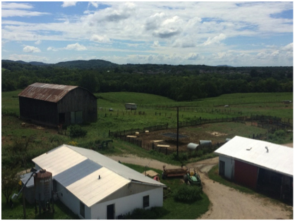 Berea College Farm.jpg