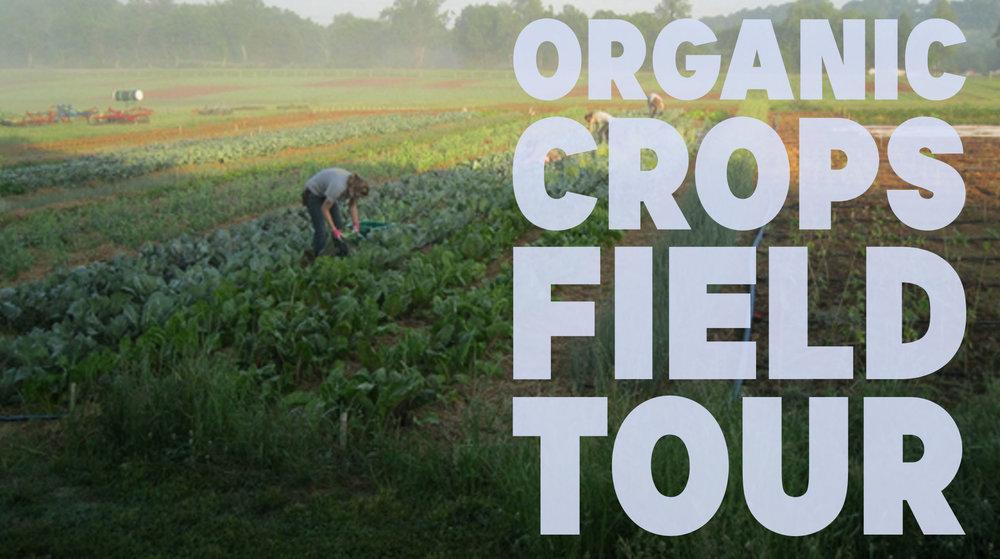 organic-crops-field-tour2.jpg