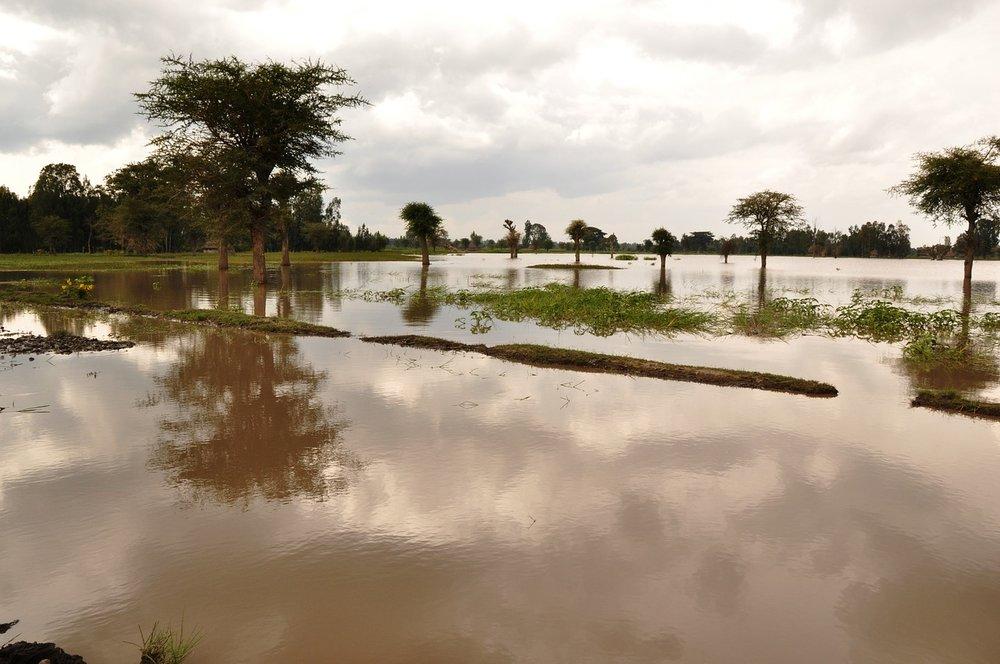 flood-2317782_1280.jpg