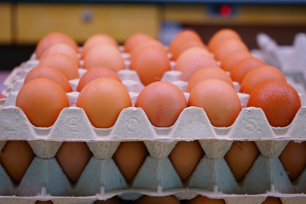 egg-318227_1920.jpg