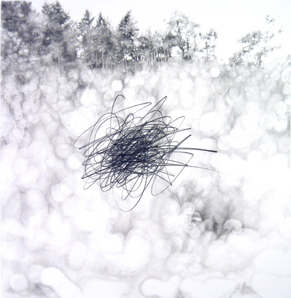 "Landscape with Gesture  2006 graphite on paper 19"" x 19"" 