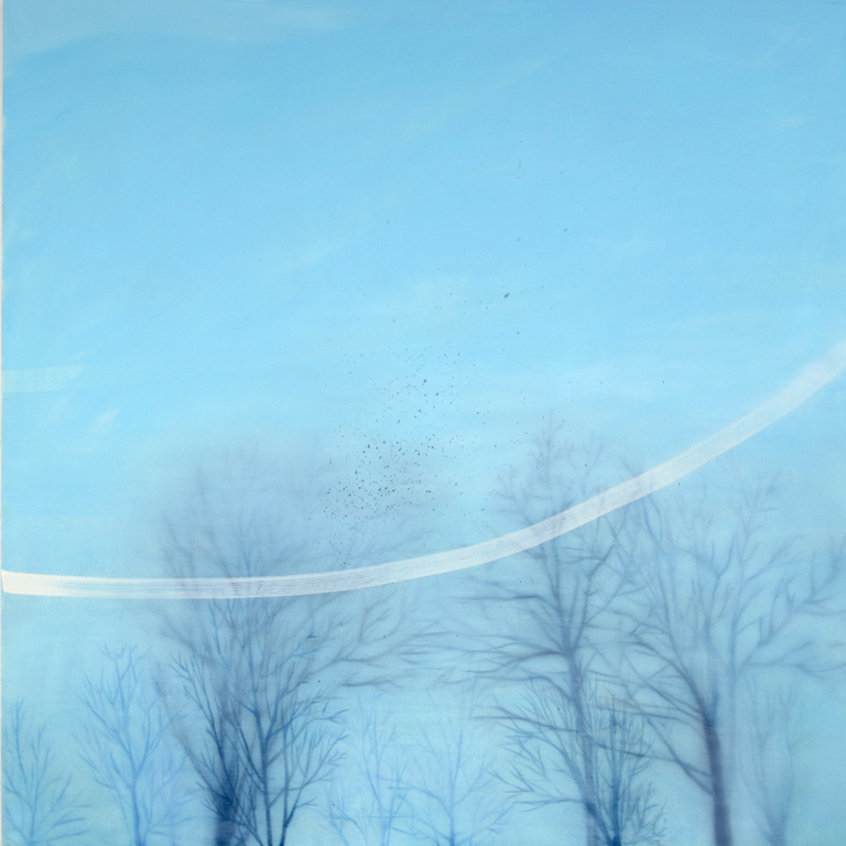 "Flock  2008 oil on canvas 40"" x 40"" 