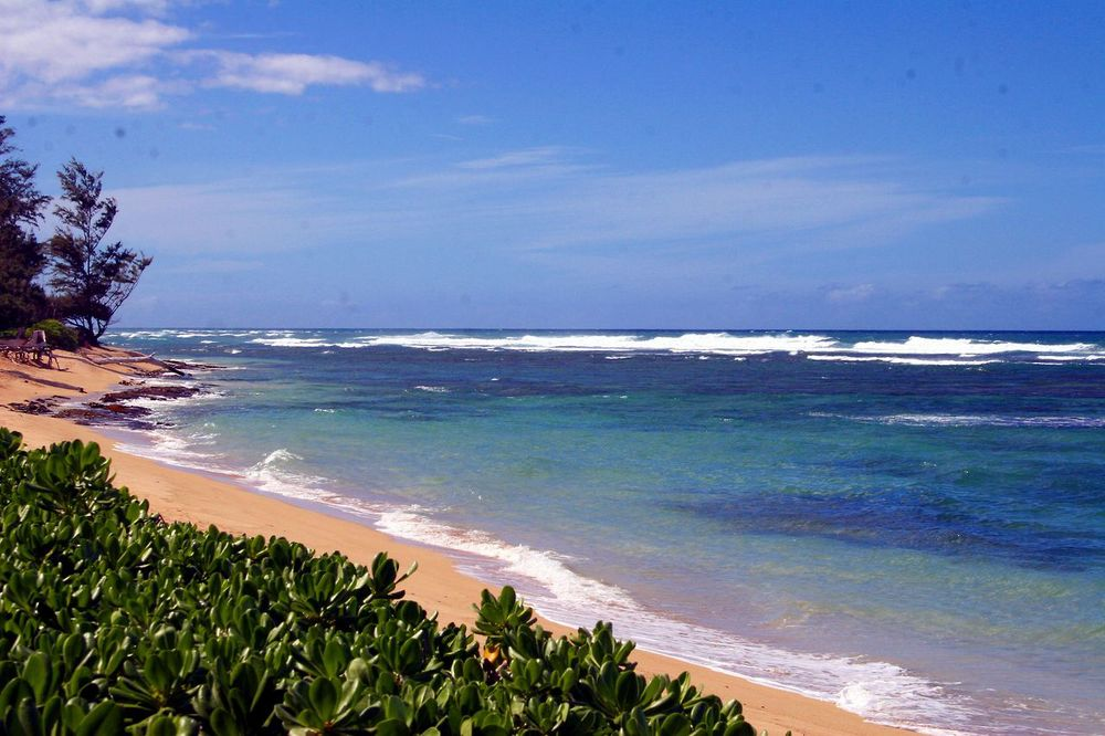 Beach_Left View.jpg