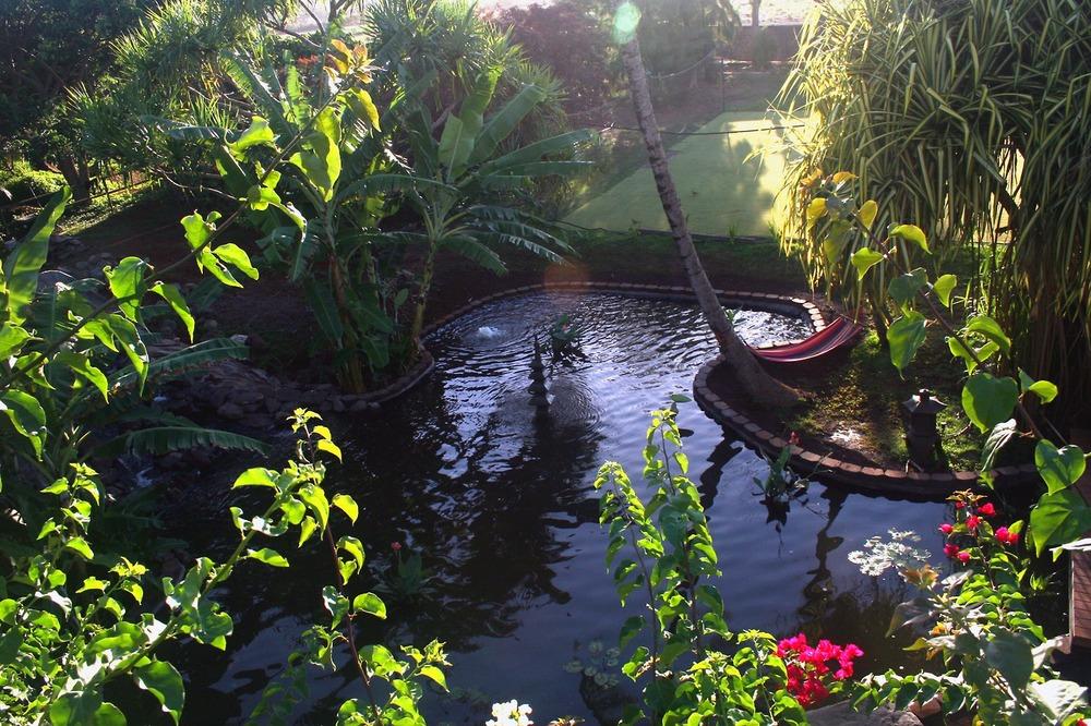 Landscape_Pond 2.jpg