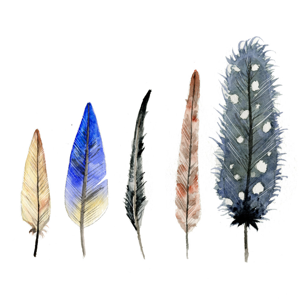 five feathers.jpg
