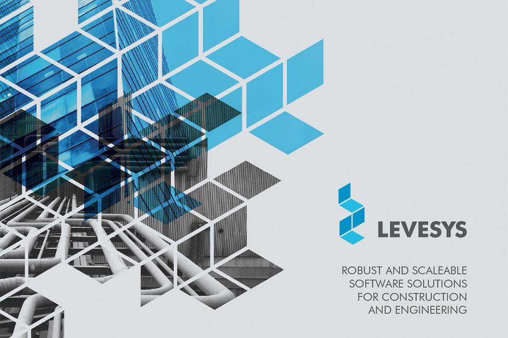 Levesys branding