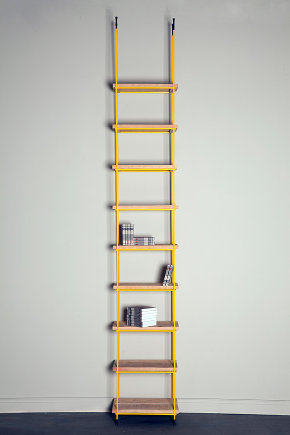 LIBRARY LADDER / 2010