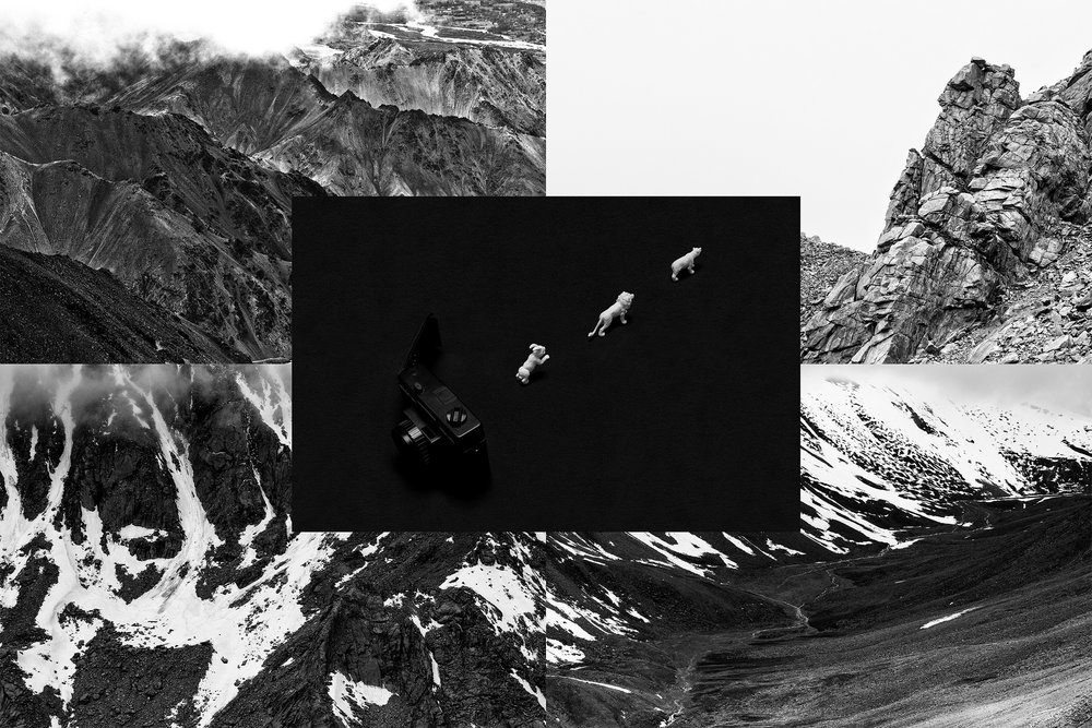 A classic camera is propped open. and from the door we see different characters coming out. It looks like a fairytale scene.The camera is a black box that has so many stories embedded within. The camera is our mind. This image is placed in the background of a collage of black and white images of a mountain range. The Himalayas. It looks like the scan of the human brain. This could be our collective consciousness. A big brain.
