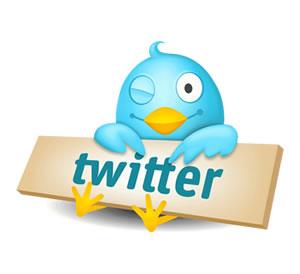 Twitter-Bird-Small.jpg