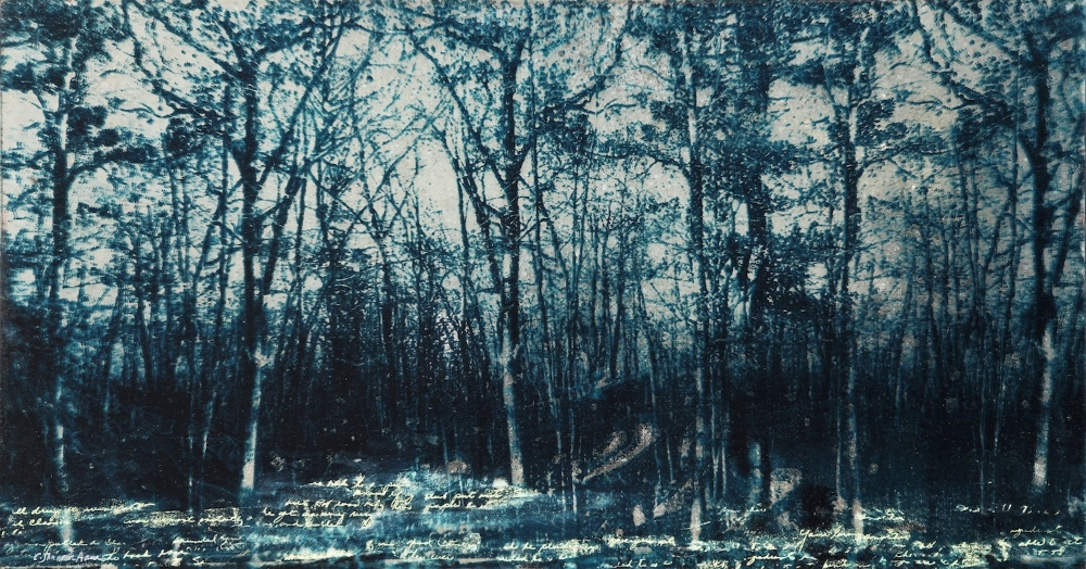 Evening , 2011, mixed media (paper lithography on antiqued mirror), 17.75 x 31.5 inches (framed), $2400.