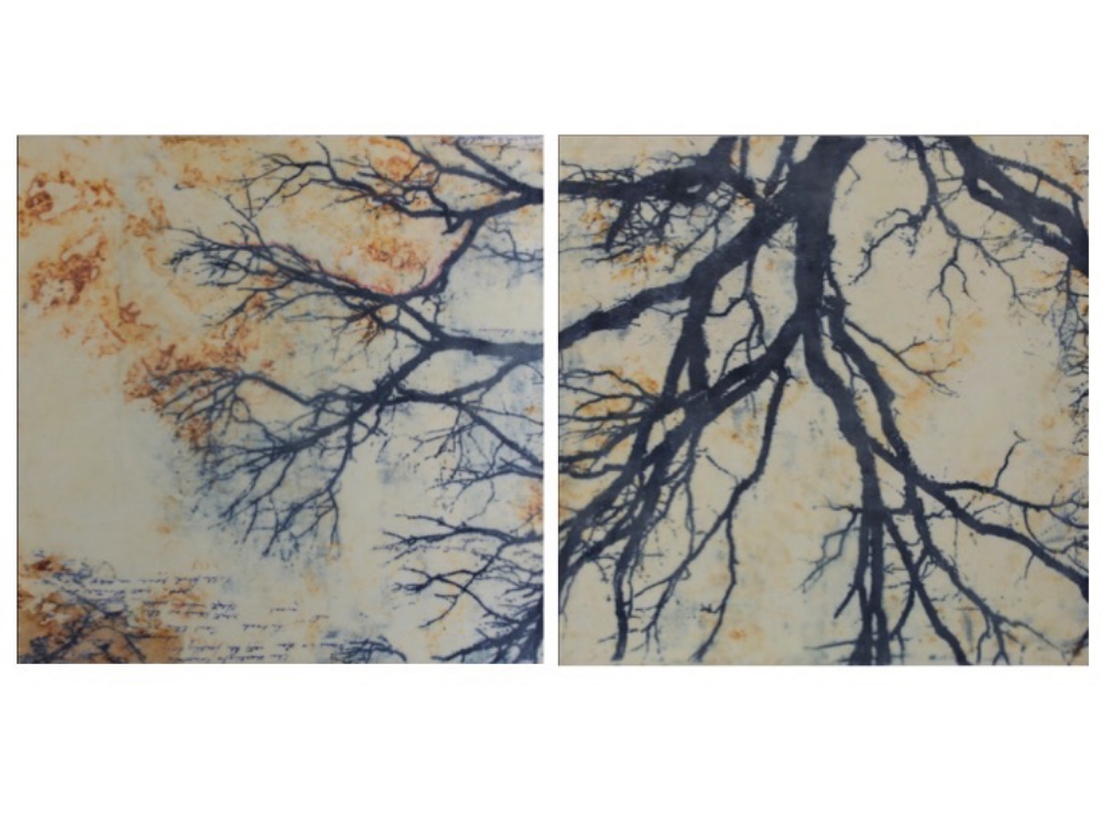 Branches,  2015, lithographic monoprint, asian paper, material, encaustic (pigmented beeswax) on panel, 30 x 60 inches (diptych), $5800. (sold)