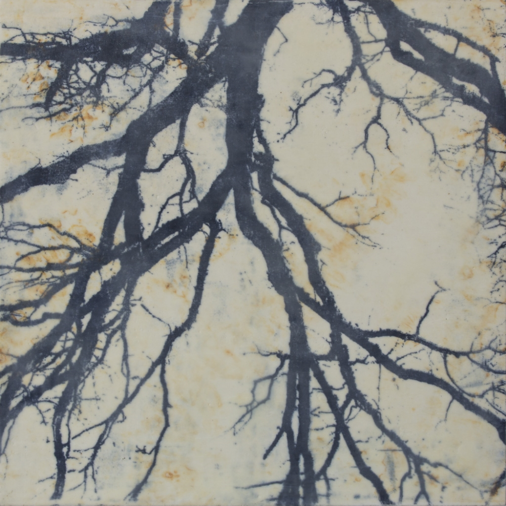 Branches (detail), 2015, lithographic monoprint, asian paper, material, encaustic (pigmented beeswax) on panel, 30 x 60 inches (diptych), $5800. (sold)