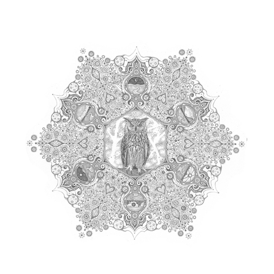 "Snowflakes #84,  ""Forester"", 2011, hand-drawn graphite on paper, 25.25 x 25.25 inches, $5000 (framed)."