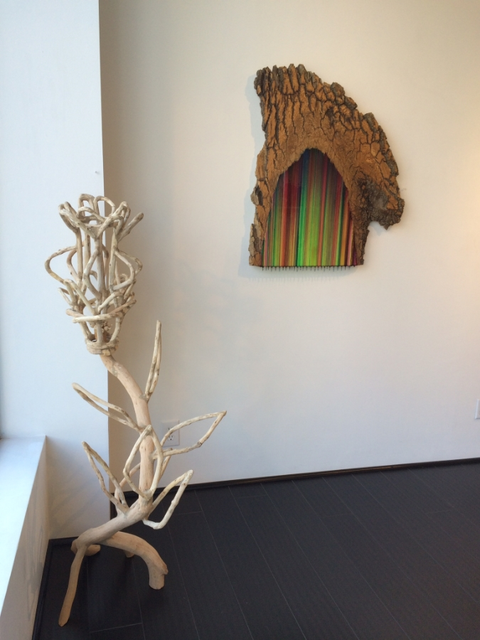 Installation view,  Ash 2  alongside sculpture by Loren Eiferman,  eARTh  Day exhibition, April 2015