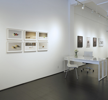 Photo'15   Palmer Davis, Nicole Ravicchio, Roger Ricco, Bastienne Schmidt, Royce Weatherly, Tricia Wright  Jan 10, 2015 - Feb 21, 2015