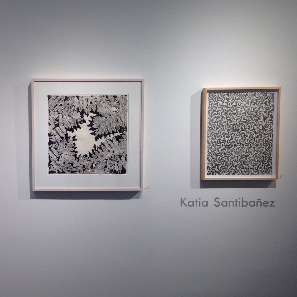 Marking Wonderland Patricia Bellan-Gillen, Jeanne Heifetz, Michiyo Ihara, Sarah Morejohn, Katia Santibañez Sep 19, 2015 -Oct 31, 2015