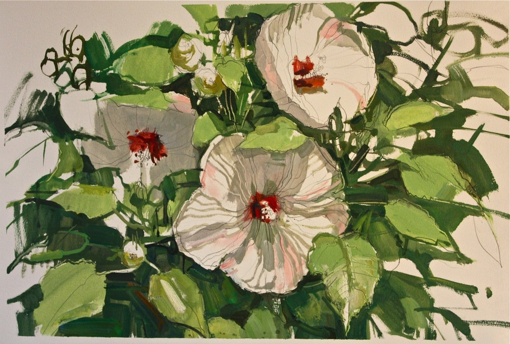 Francis Sills,  Hibiscus Blooming , 2014, oil and graphite on Arches paper, 27 x 20 inches (framed), $1350.
