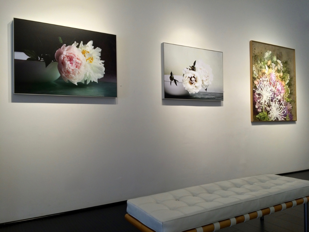 Installation view,  Peonies 3  and  Peonies 7  alongside painting by Cara Enteles,  Flower Power  exhibition, 2016