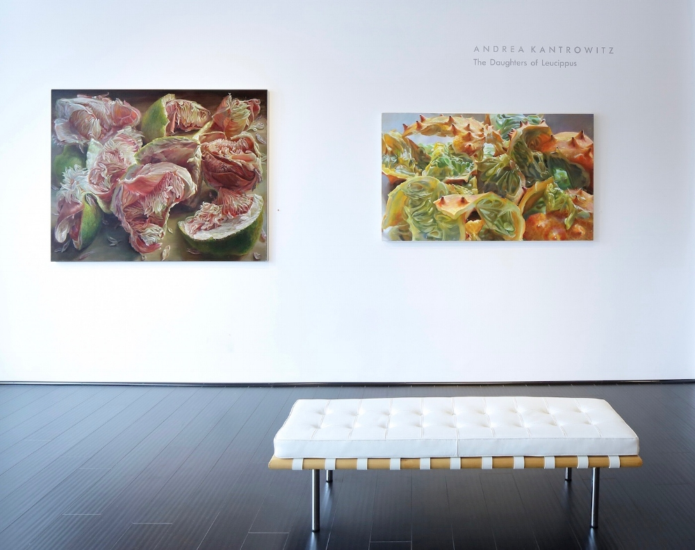 Daughters of Leucippus  (left, sold) and  Myriad Ravines  (right), installation view  photo credit: Fisher Hart photography