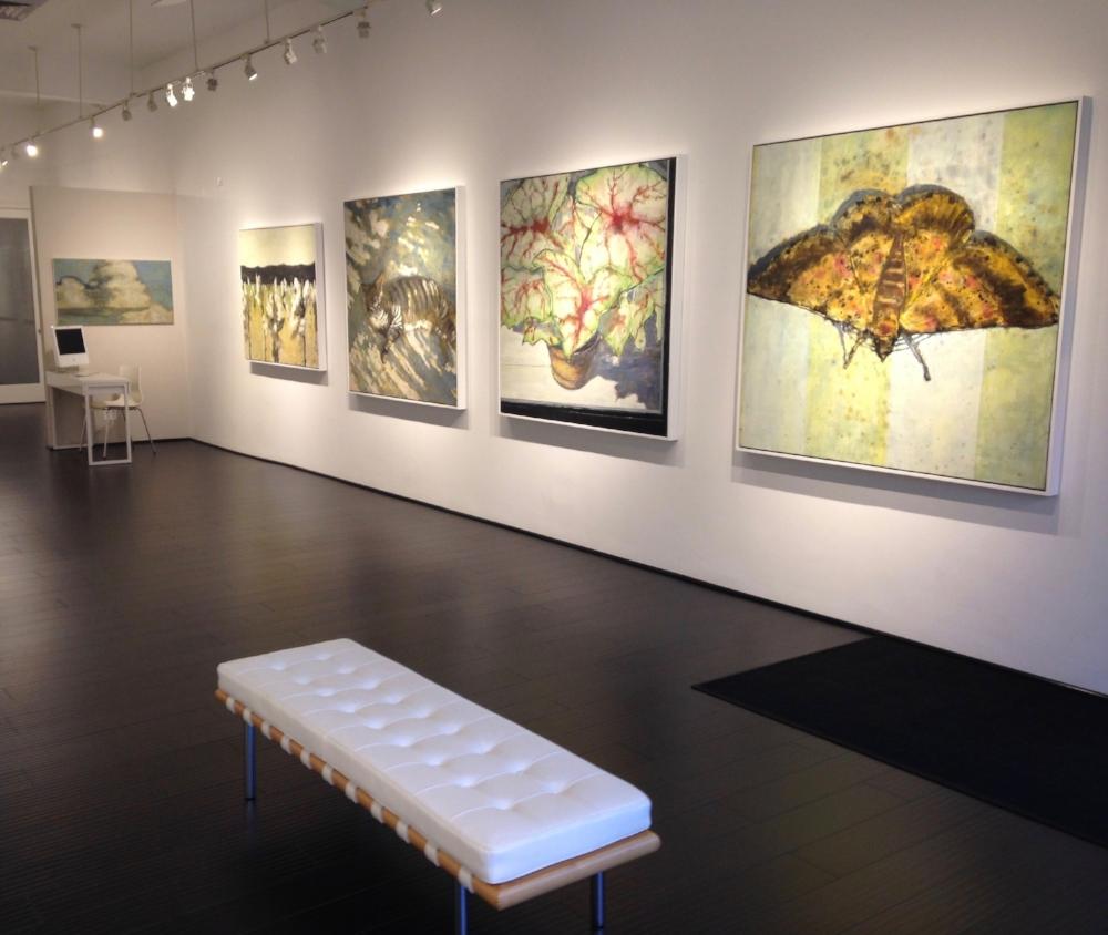 Installation view, Nigh Season solo exhibition, 2014